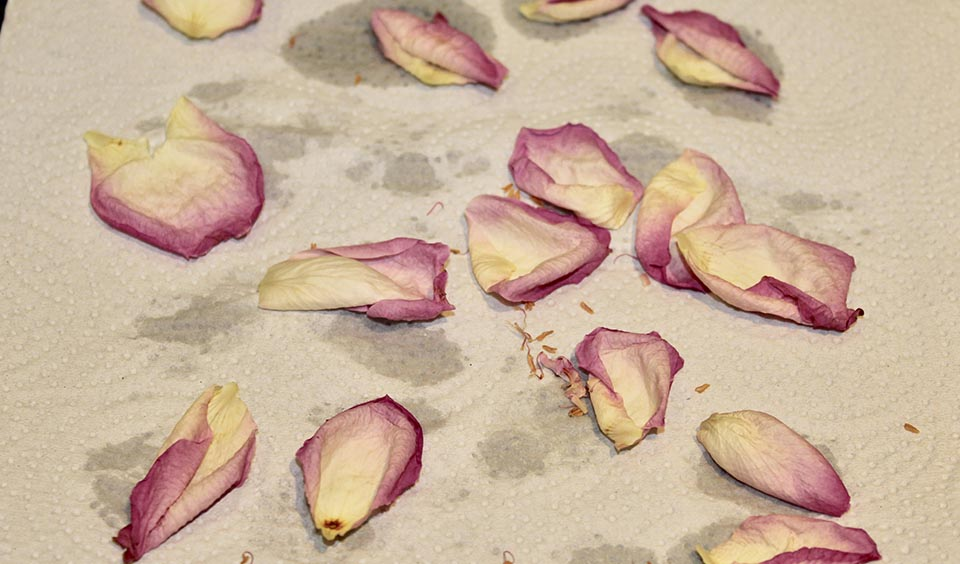 How To Make Real Petal Confetti For Your Special Day At