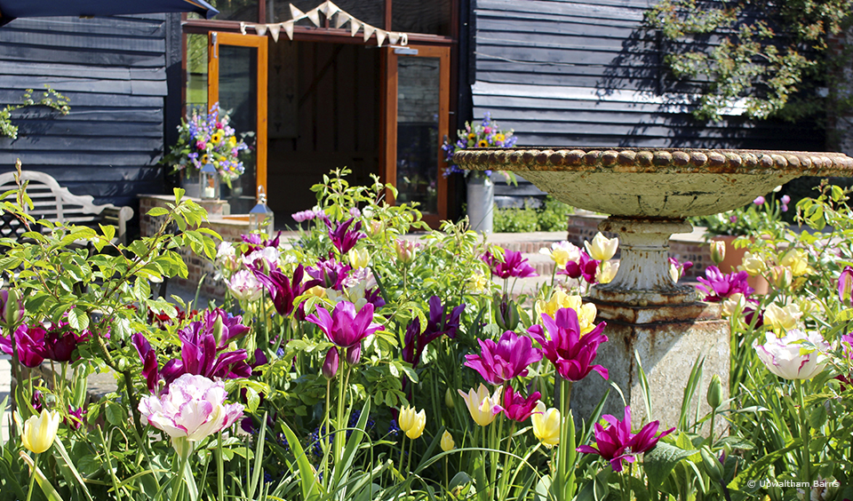 Vibrant spring flowers create a beautiful entrance to the East Barn at Upwaltham Barns
