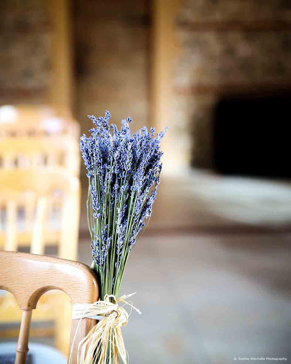 Posies of lavender are attached to aisle ends in the East Barn at Upwaltham Barns for a rustic wedding